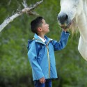 Veste Horseware imperméable enfant