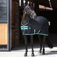 "Amigo ""Stable Sheet Polyester"" - Noir/Teal"
