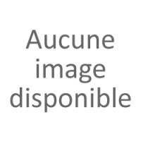 Cravache fluo - TdeT